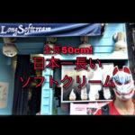"""【大阪】全長50cm?!日本一長いソフトクリーム""""ロングソフトクリーム"""""""